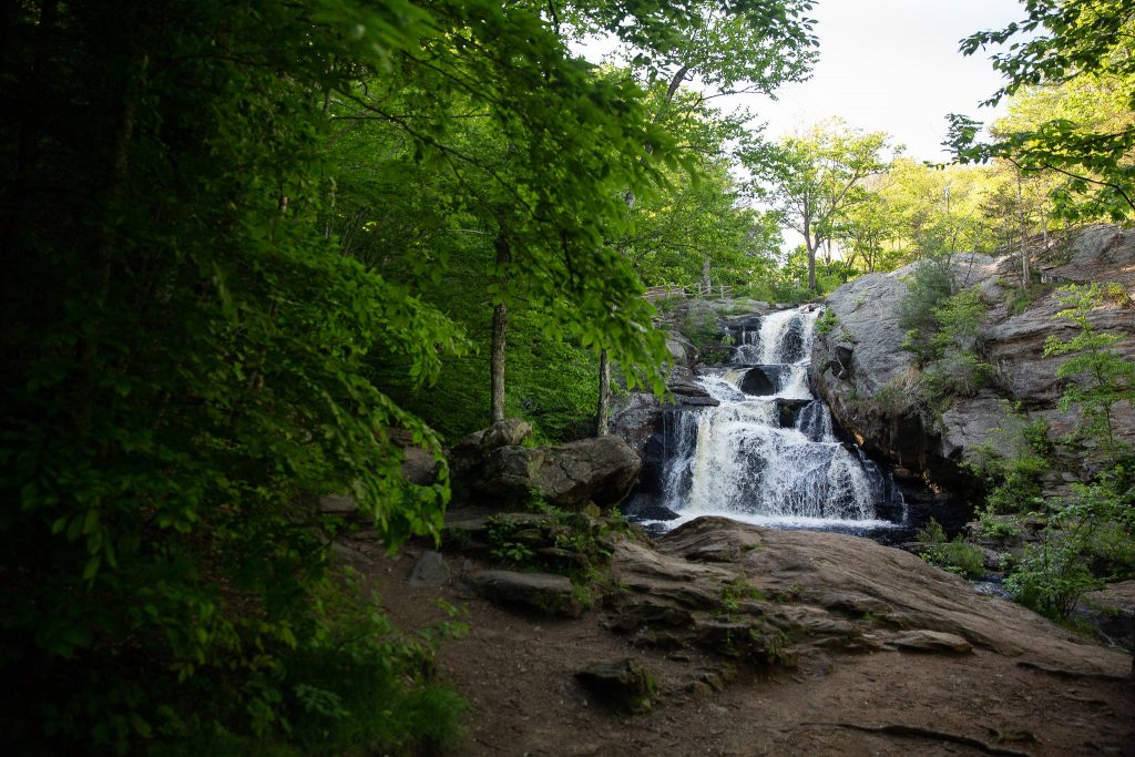 The journey began at Chapman Falls in Devil's Hopyard State Park. No one is entirely sure how the park got its unique name, but there are lots of stories. Photo by Ryan Caron King for Connecticut Public Radio