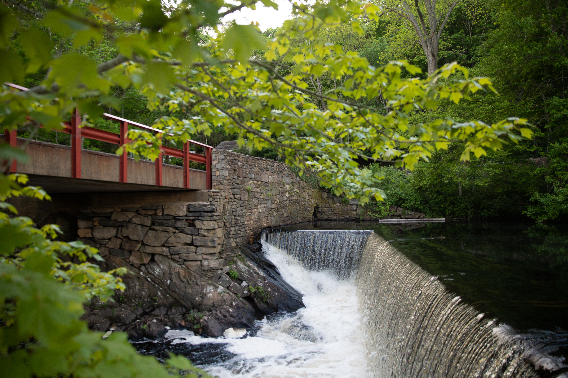 A dam on Moulson Pond along a section of the Eightmile River in Lyme, Connecticut. Photo by Ryan Caron King for Connecticut Public