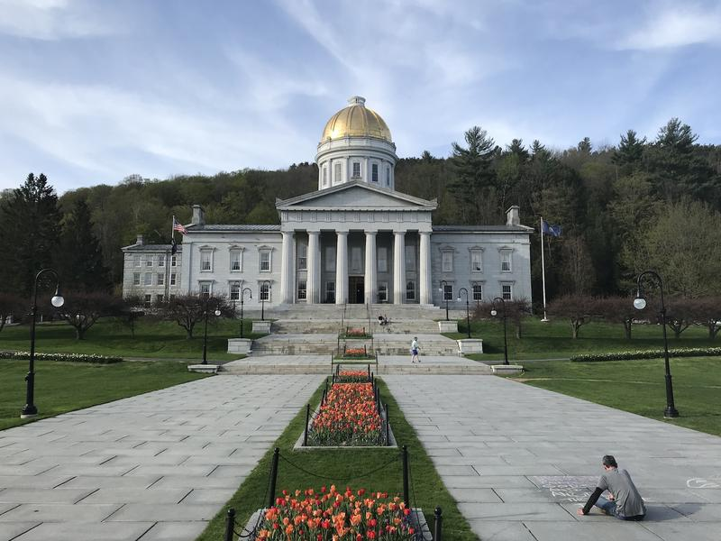 The Vermont State House. Photo by Emily Alfin Johnson for VPR