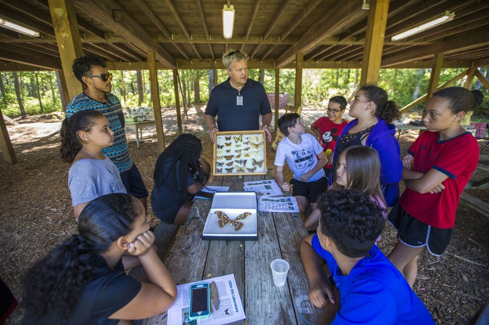 Ron Mack fields questions from campers of the Mashpee Wampanoag science camp while he presents cases filled with different types of butterflies. Photo by Jesse Costa for WBUR