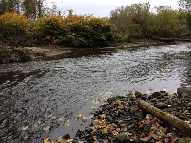 A stretch of the Housatonic River that under an EPA proposal would be dredged to remove PCBs. Photo by Nancy Eve Cohen for NEPR
