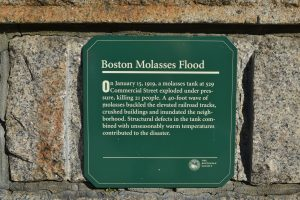 Molasses Flood plaque. Photo by Julia Press
