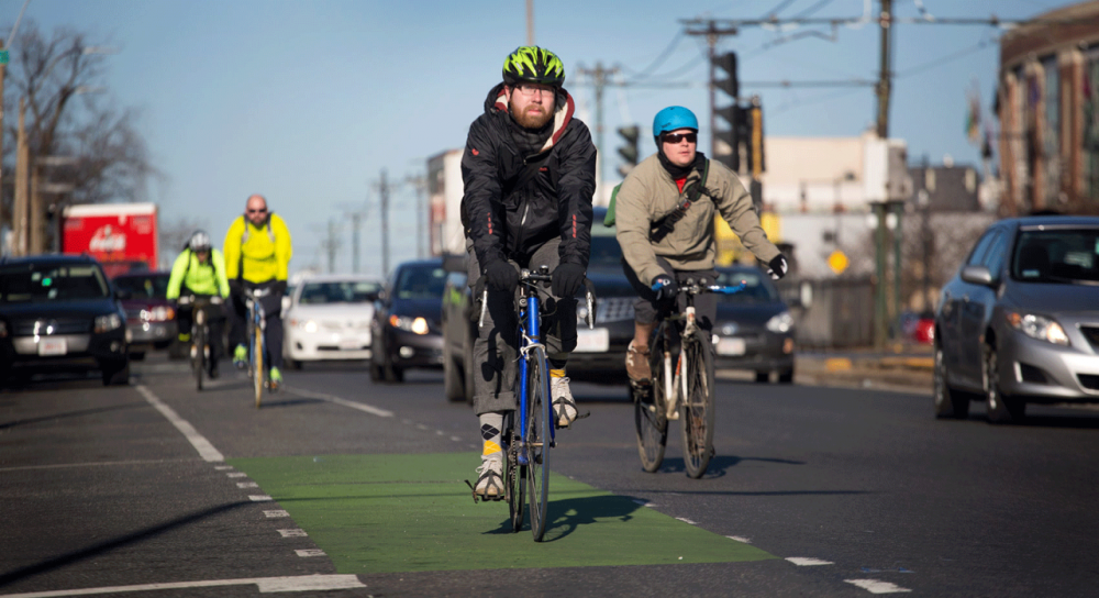 Cyclists ride down Commonwealth Avenue in Boston. Photo by Robbin Lubbock for WBUR