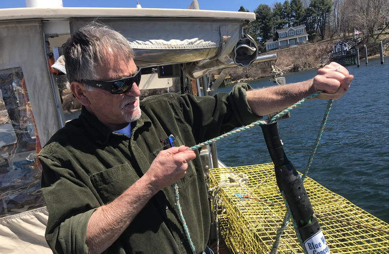 Innovations In Fishing Gear Could Change The Lobster