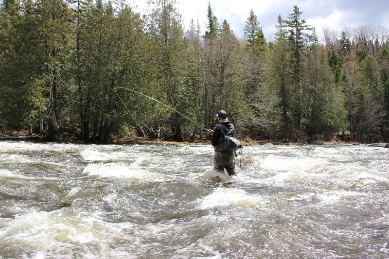 Fishing Guide Bill Bernhardt fishing the cold rushing waters of the Connecticut. Photo by Sean Hurley for NHPR