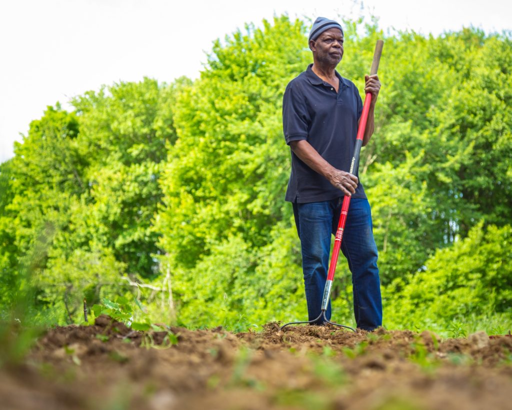 Julius Kolawole, the founder of African Alliance of Rhode Island, at Bami Farmer in Johnston. Bami is one of the Alliance's projects. (Cheryl Adams/The Public's Radio)