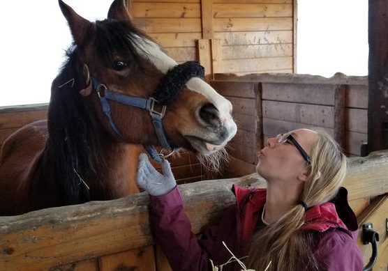 "Inmate Carrisa Butkewitcz cares for Tavish, an older horse at the Maine State Society for the Protection of Animals in Windham that she describes as ""calm and sweet."" Photo by Susan Sharon for Maine Public"