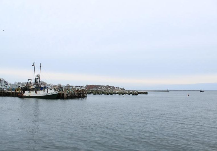 A view of the docks in Stonington, Conn. Women are increasingly shaping the food landscape in the area – as farmers, fisherwomen and food educators. Photo by Cassandra Basler for WSHU