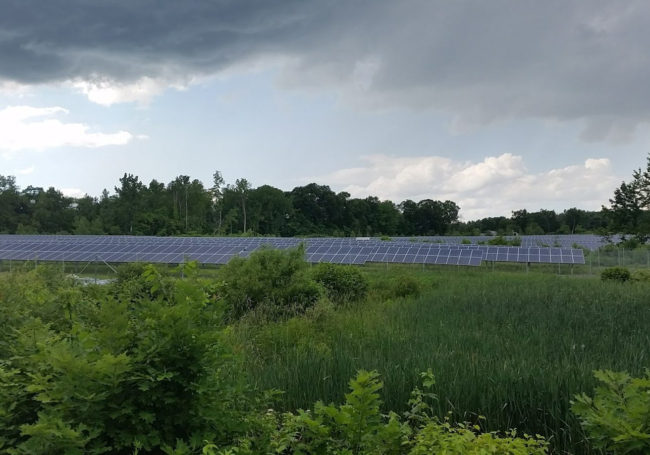 "Farmer Kevin Sullivan rents a portion of his land to a solar company. ""The money that comes off that acreage exceeds anything else I could do out there,"""