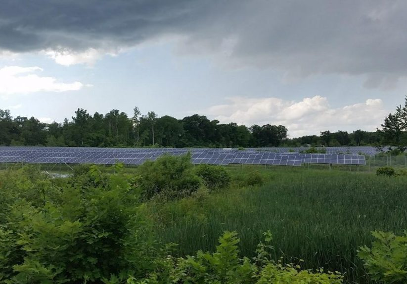 Kevin Sullivan put solar panels on a portion of his 60 acres of property in Suffield, Connecticut. Photo by Patrick Skahill for WNPR